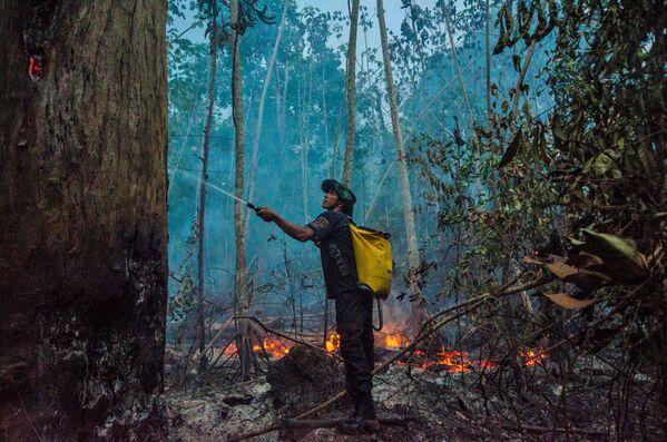 Los incendios naturales en la Amazonía brasileña quemaron un 50% más de bosques en agosto y septiembre que en el mismo período del año 2019. Fue destruido casi el 30% de Pantanal, la ecorregión pantanal más grande del mundo. El humo de los incendios cubrió las regiones del sur de Brasil y los países vecinos. - Sputnik Mundo