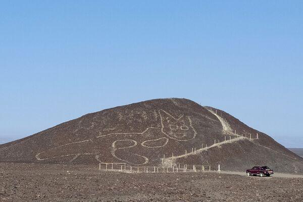 En la meseta de Nazca en Perú los arqueólogos descubrieron un geoglifo de un felino de más de 2.000 años. La longitud del geoglifo es de 37 metros, el grueso de líneas es de 30 o 40 centímetros. La imagen milenaria fue localizada mientras se realizaban trabajos de remodelación de un mirador.  - Sputnik Mundo