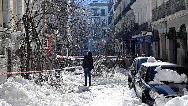 Una vecina en Madrid contempla los destrozos en la vía urbana tras la gran nevada - Sputnik Mundo
