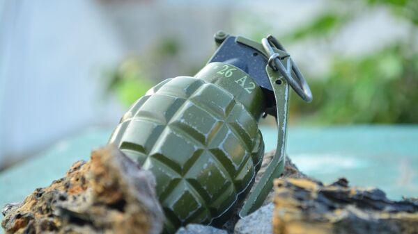 Una granada de mano (referencial) - Sputnik Mundo