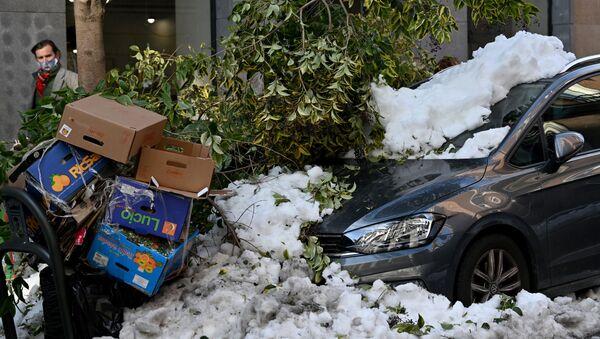 Coches y árboles destrozados a consecuencia del temporal en Madrid - Sputnik Mundo