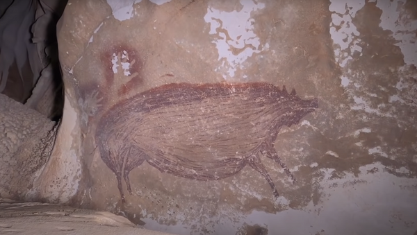 Una pintura del jabalí encontrada en una cueva indonesia - Sputnik Mundo