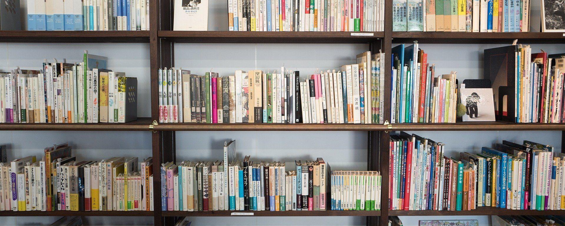 Imagen referencial de una estantería llena de libros - Sputnik Mundo, 1920, 10.05.2021