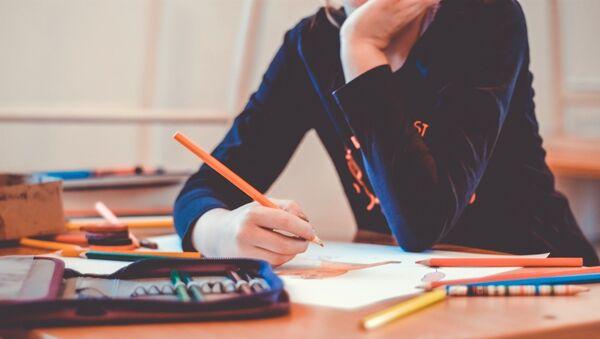 Un estudiante (imagen referencial) - Sputnik Mundo