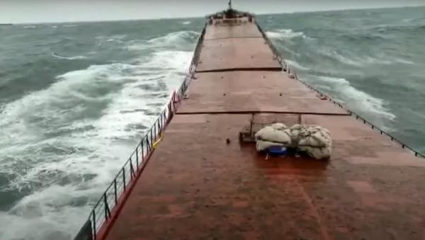El momento del naufragio del carguero ucraniano Arvin - Sputnik Mundo