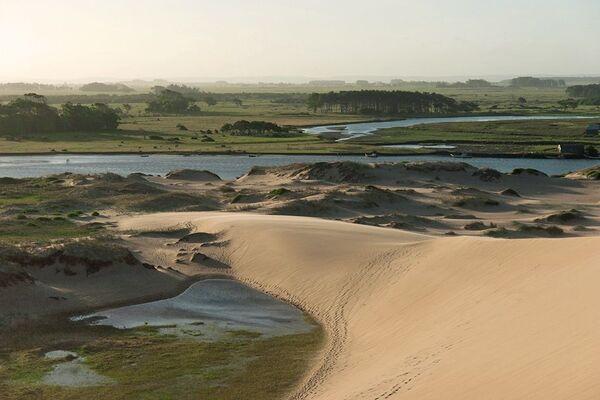 Los Bañados del Este y Franja Costera de los departamentos Rocha, Treinta y Tres y Cerro Largo de Uruguay, fueron los segundos humedales en ser incluidos en la lista Ramsar de Humedales, el 22 de mayo de 1984. Se trata de un área protegida instituida por la UNESCO en 1976 que abarca más de 12.500 km². Más del 90% de la superficie de la reserva son tierras privadas. - Sputnik Mundo