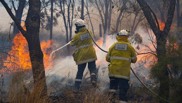Un incendio forestal en Australia - Sputnik Mundo