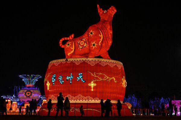 Un farol gigante con forma de toro en el parque de Wuhan, China. - Sputnik Mundo