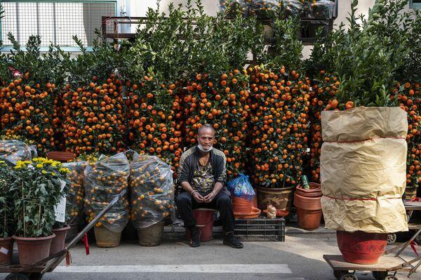 En Hong Kong, las autoridades locales no eliminaron las restricciones: es necesario respetar la distancia, y los restaurantes no atienden a los visitantes después de las seis de la tarde. En la foto: un mercadillo de flores durante los preparativos para el próximo Año Nuevo chino en Hong Kong. - Sputnik Mundo