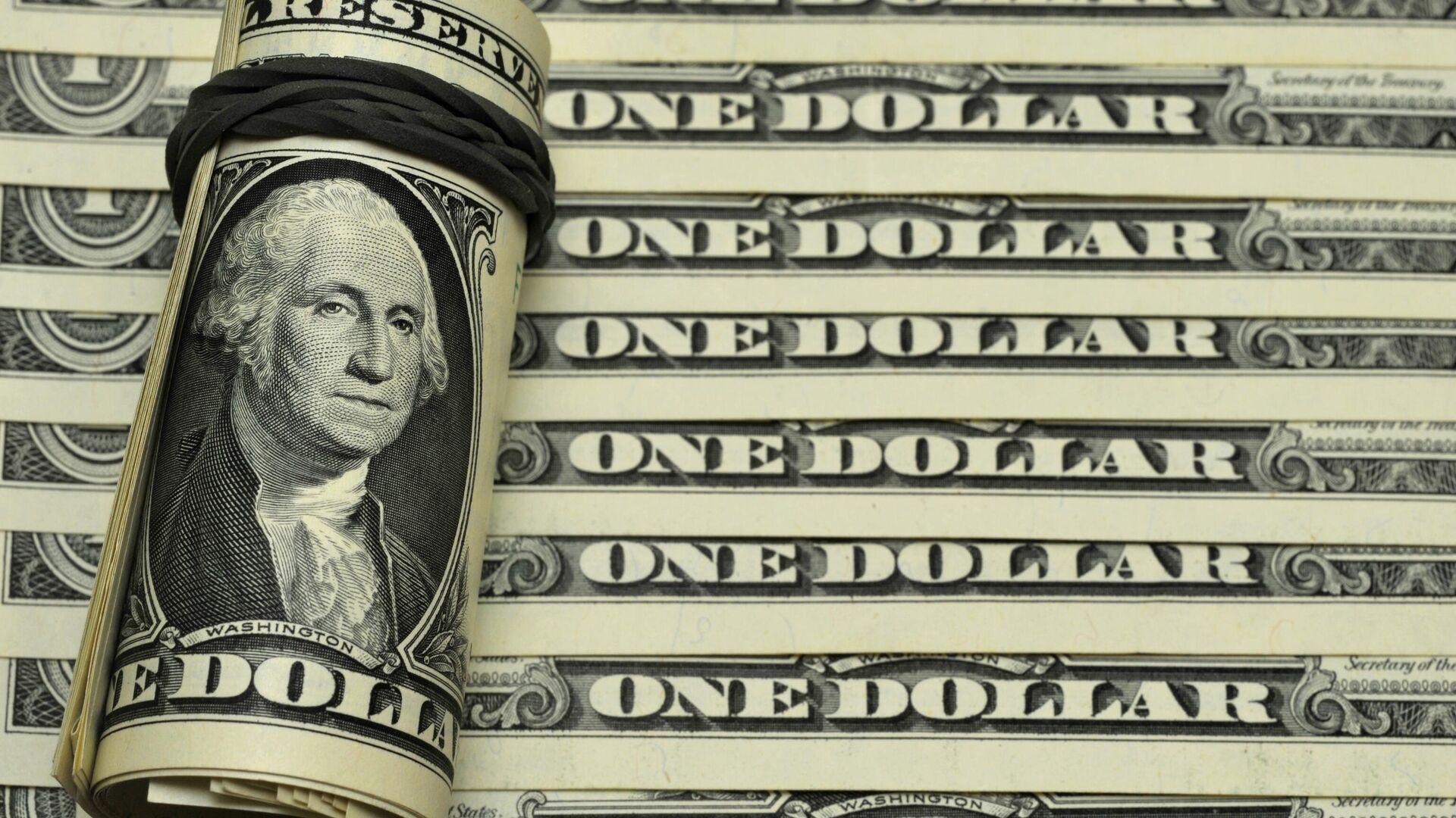 Los billetes de dólares de EEUU - Sputnik Mundo, 1920, 15.02.2021