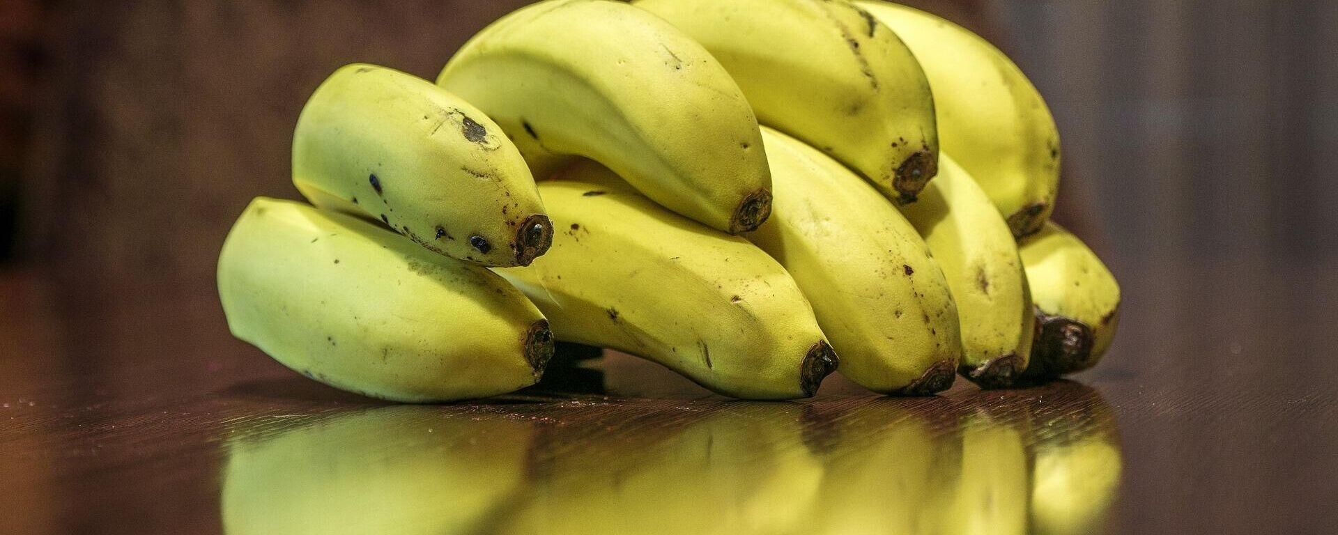 Bananas, plátanos o guineos - Sputnik Mundo, 1920, 26.02.2021