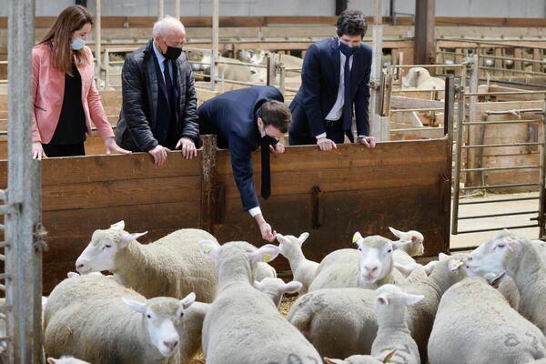 El presidente de Francia, Emmanuel Macron, durante su visita a una granja en Borgoña. - Sputnik Mundo
