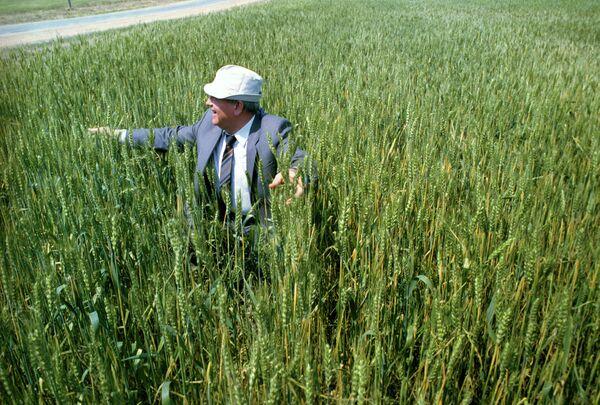 Mijaíl Gorbachov en una visita de Estado a Kazajistán, en 1991. - Sputnik Mundo