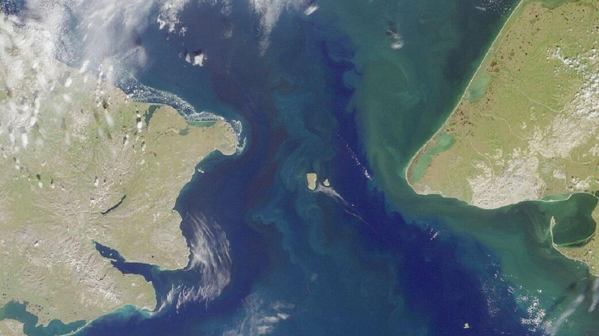 El estrecho de Bering que separa Siberia de Alaska en el Pacífico Norte - Sputnik Mundo, 1920, 03.05.2021