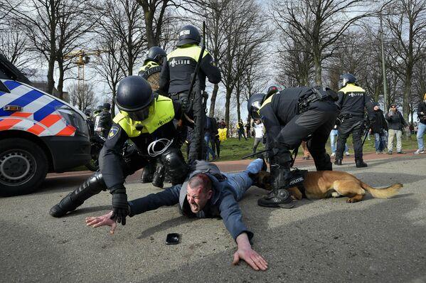 Los agentes de Policía detienen a un manifestante durante una protesta antigubernamental en La Haya (Países Bajos). - Sputnik Mundo