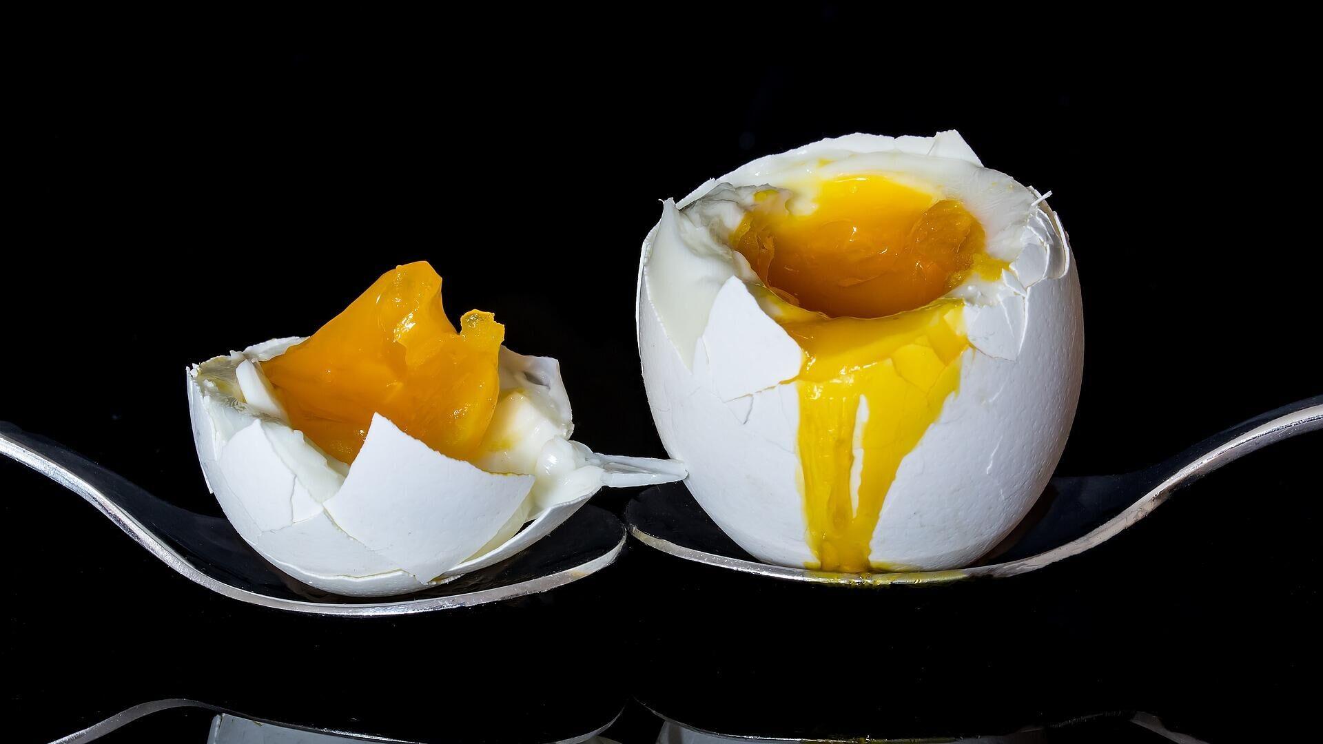 Un huevo, imagen ilustrativa - Sputnik Mundo, 1920, 26.03.2021