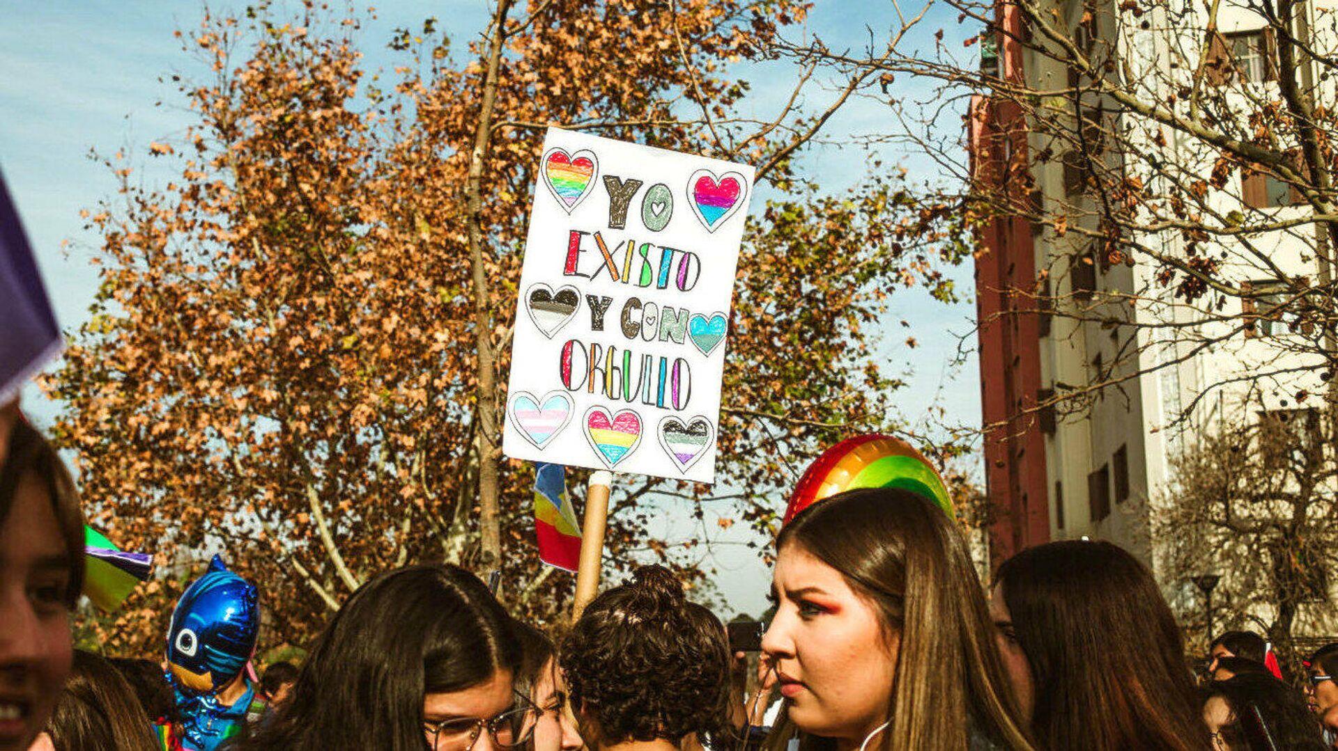 Marcha por el Orgullo LGBTI en Santiago,  junio 2019 - Sputnik Mundo, 1920, 07.04.2021