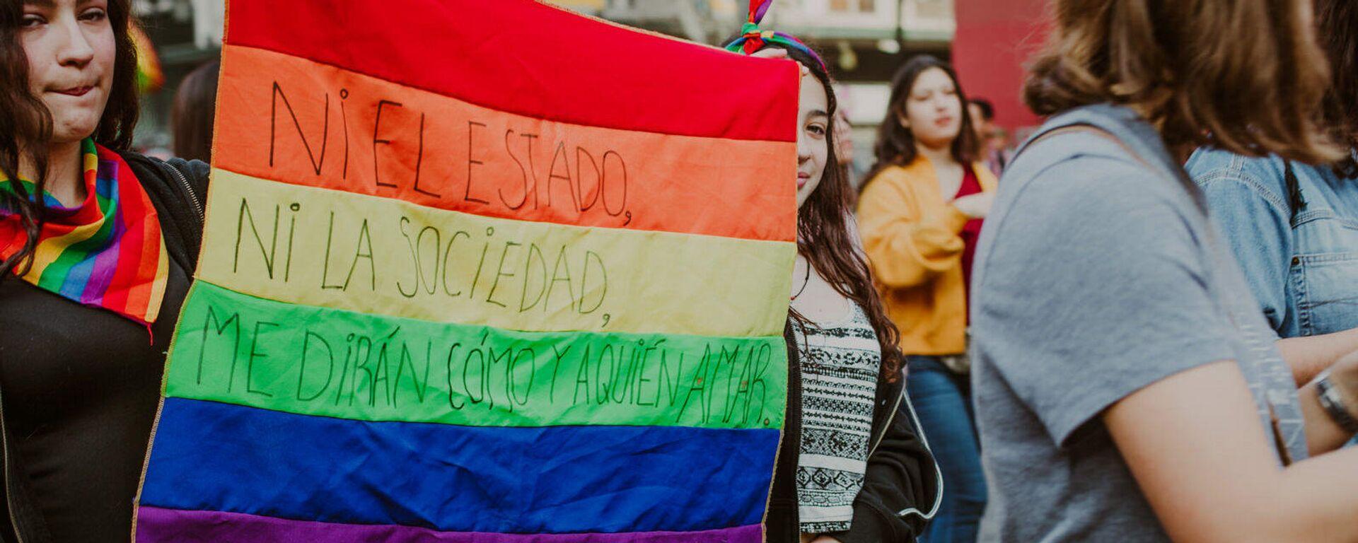 Marcha por el Orgullo LGBTI en Chile - Sputnik Mundo, 1920, 07.04.2021