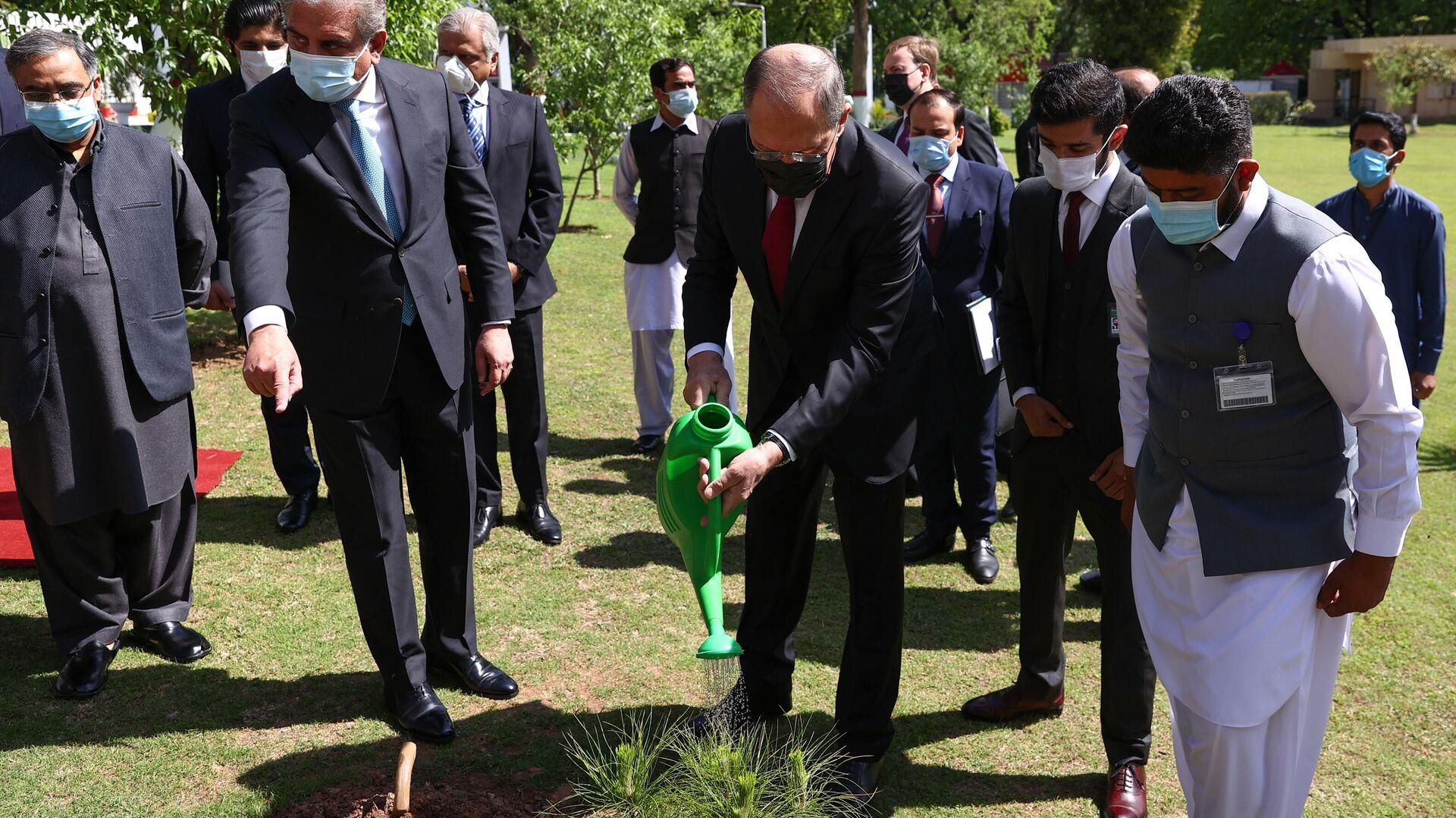 Lavrov plantó el cedro del Himalaya en Islamabad - Sputnik Mundo, 1920, 08.04.2021