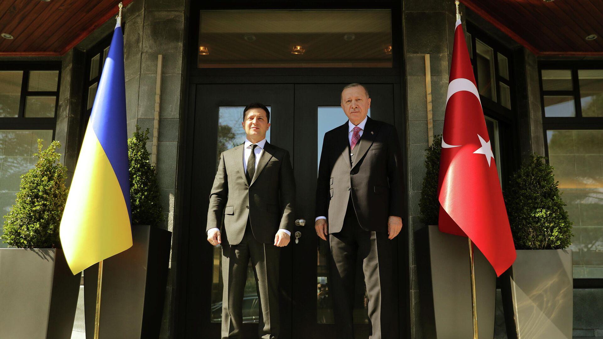 Volodímir Zelenski, presidente ucraniano y Recep Tayyip Erdogan, presidente de Turquía - Sputnik Mundo, 1920, 10.04.2021