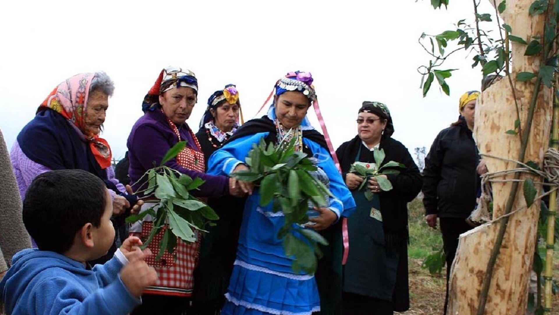 Ceremonia mapuche - Sputnik Mundo, 1920, 14.04.2021