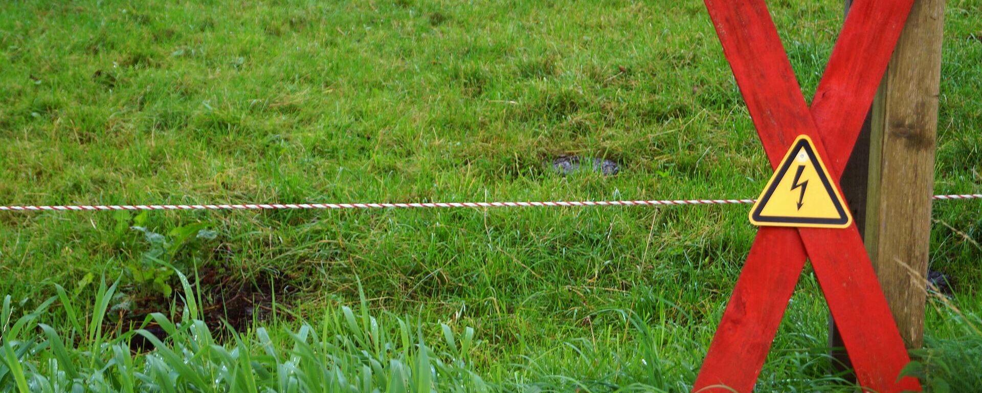 Una cerca eléctrica. Imagen referencial - Sputnik Mundo, 1920, 19.04.2021