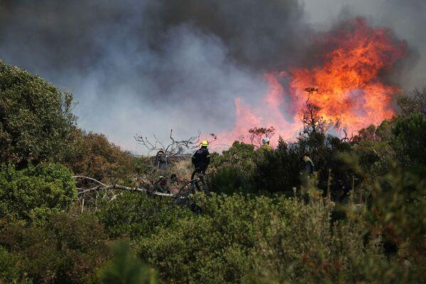 Extinción del fuego en Ciudad del Cabo. - Sputnik Mundo