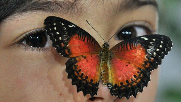 Бабочка на лице девушки, Бишкек  - Sputnik Mundo