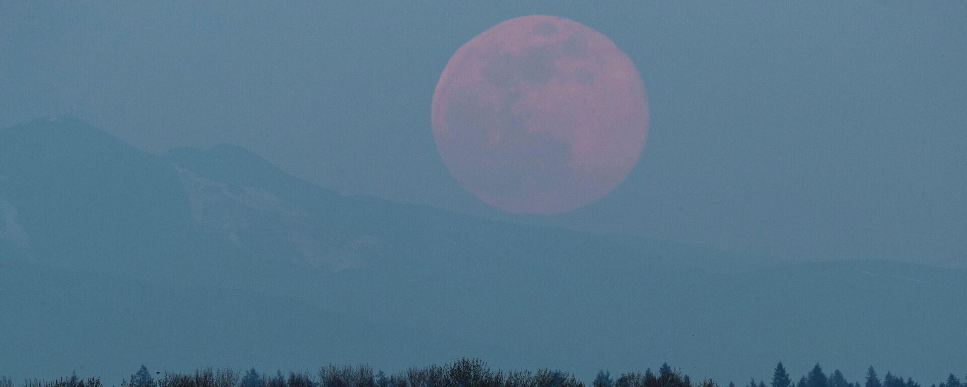 La superluna de abril 2020 en Tacoma (EEUU) - Sputnik Mundo, 1920, 24.05.2021