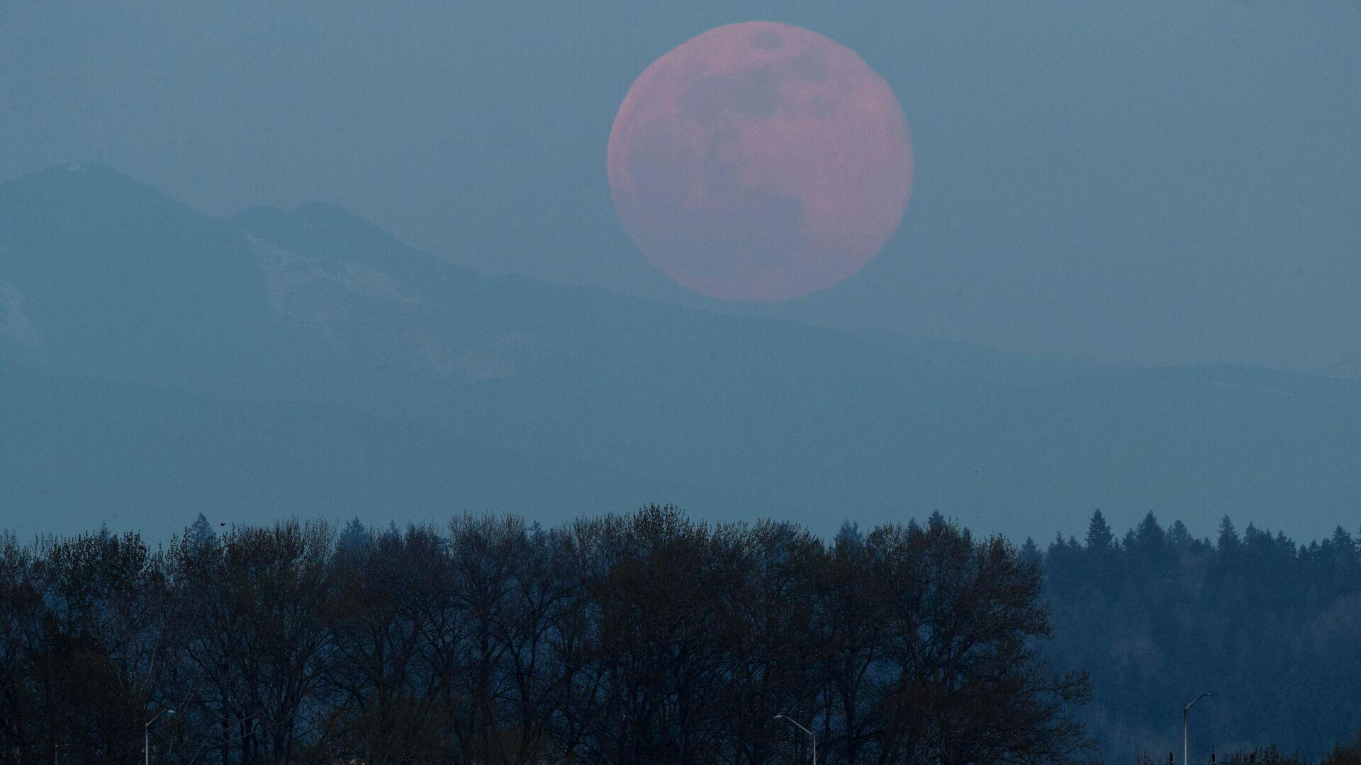 La superluna de abril 2020 en Tacoma (EEUU) - Sputnik Mundo, 1920, 25.04.2021