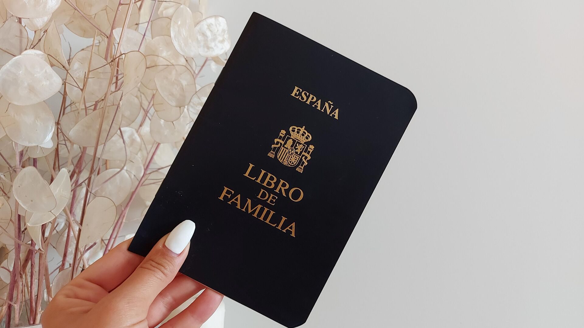 Ejemplar de Libro de Familia expedido en Madrid - Sputnik Mundo, 1920, 30.04.2021