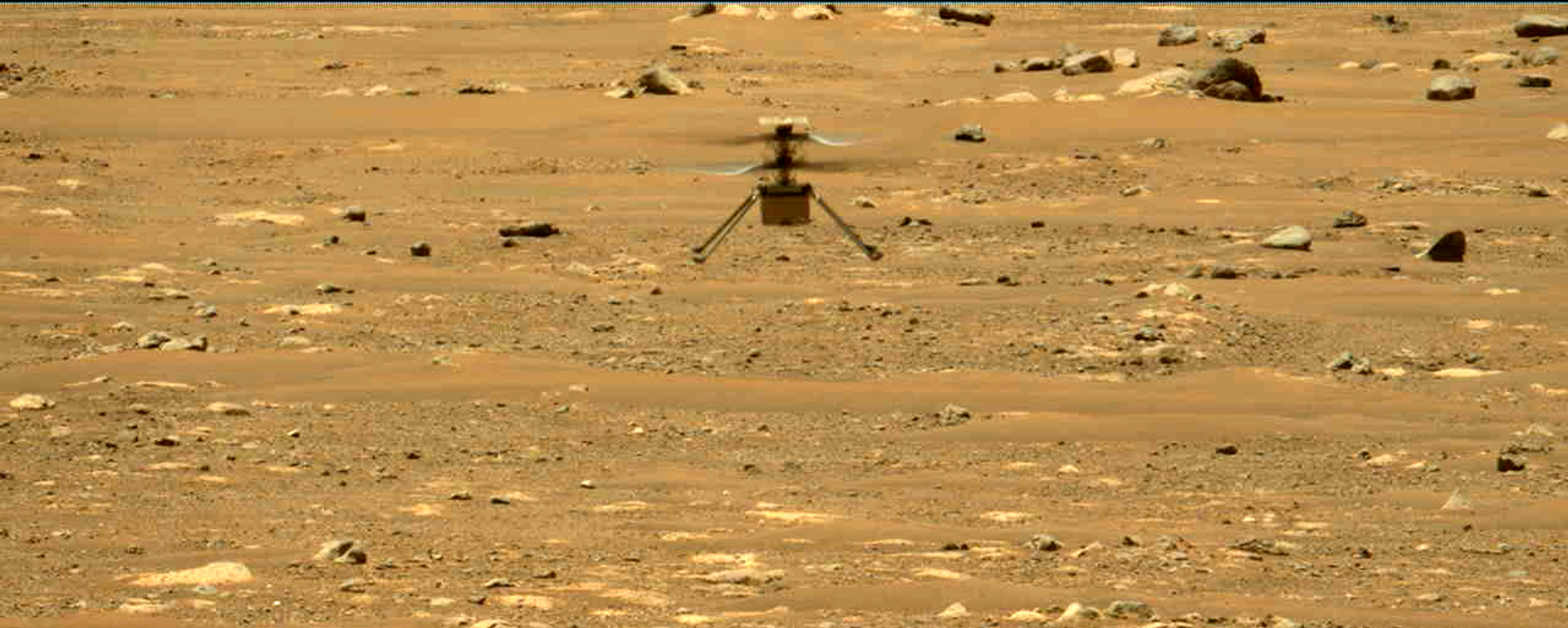 El helicóptero marciano Ingenuity - Sputnik Mundo, 1920, 02.05.2021