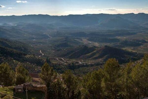 El olivar desde el castillo de Segura de la Sierra - Sputnik Mundo