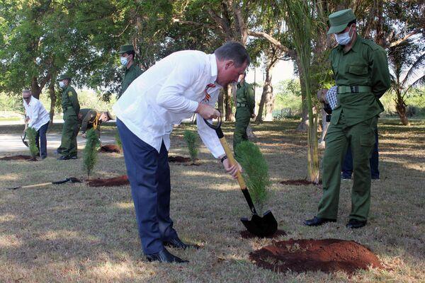 Embajador de Rusia en Cuba, Andréi Guskov, planta árbol en Jardín de la Memoria en La Habana - Sputnik Mundo