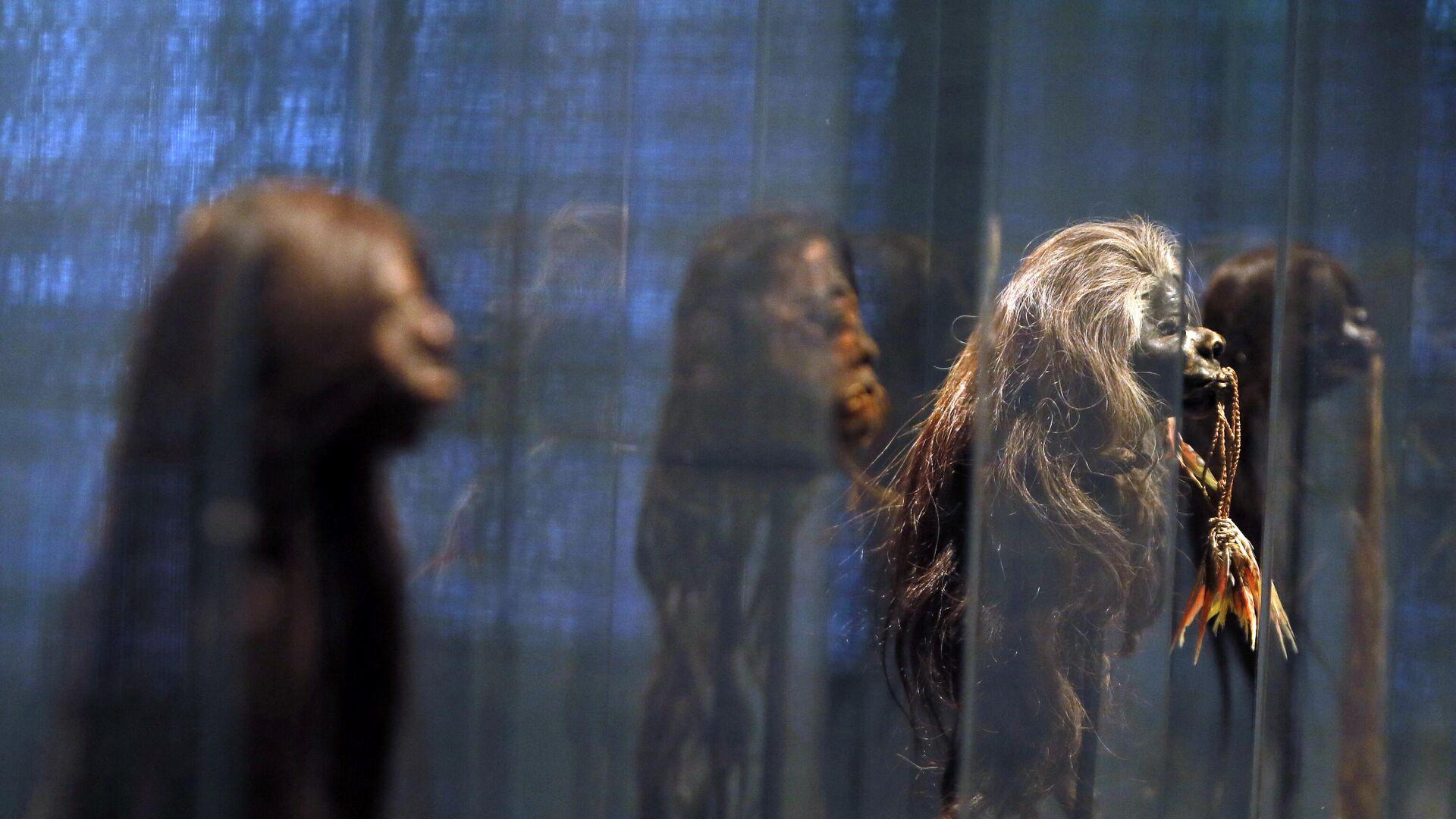 Unas tzantzas en exposición en un museo París, Francia - Sputnik Mundo, 1920, 11.05.2021
