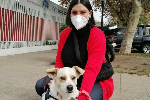 Javiera no quizo dejar fuera a Chica, su perrita, en la mega elección que comenzó este fin de semana en Chile. - Sputnik Mundo