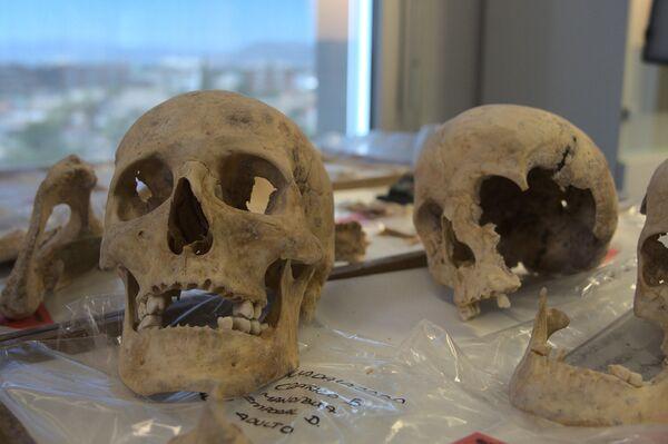 Análisis de ADN de los restos de Colón, su hermano e hijo - Sputnik Mundo