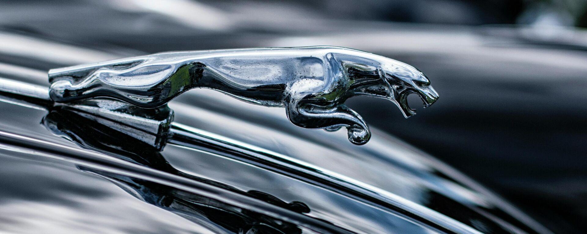 El símbolo de Jaguar en un coche de la marca - Sputnik Mundo, 1920, 20.05.2021
