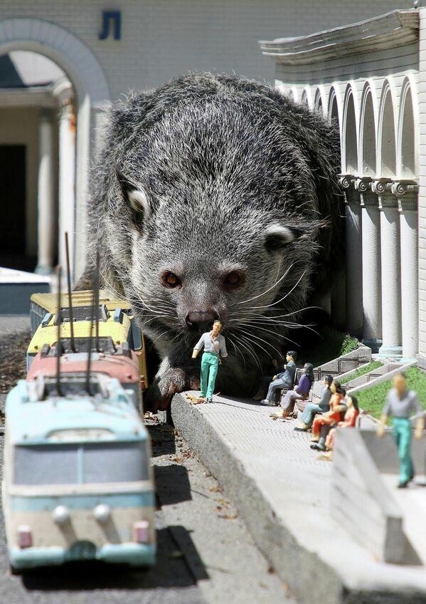 Además de las miniaturas, el parque posee una gran colección de mamíferos, aves y reptiles.  - Sputnik Mundo