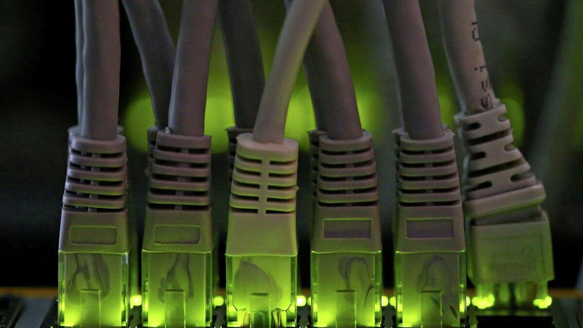 Los cables de la red LAN conectados a un servidor informático de minería de criptomonedas - Sputnik Mundo, 1920, 31.05.2021
