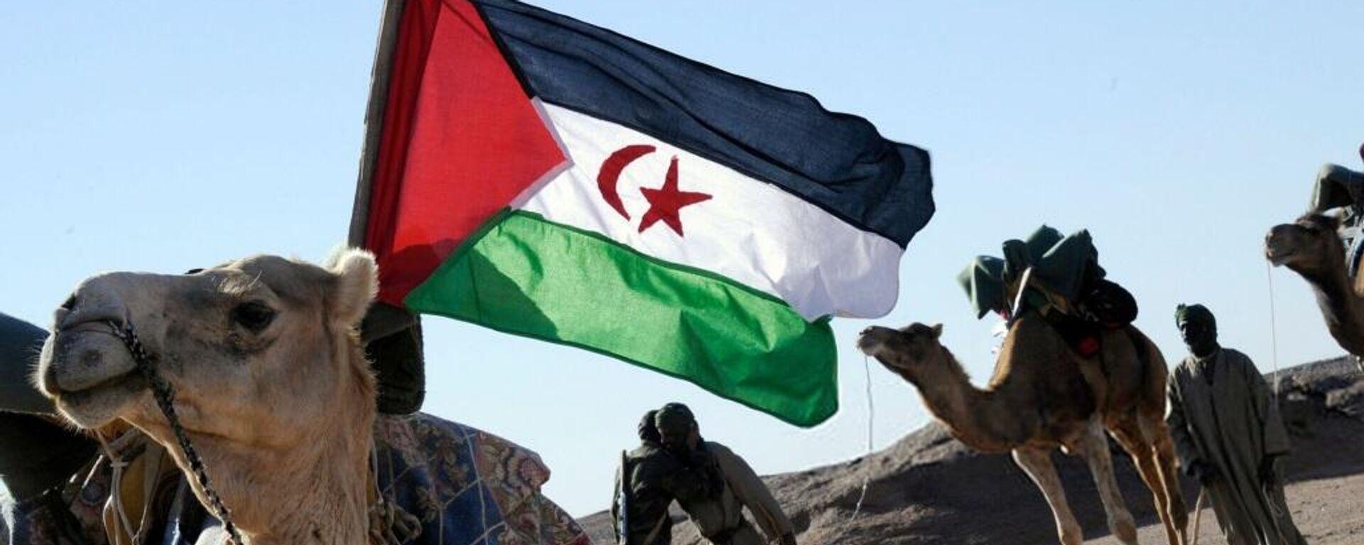 Bandera de Sáhara Occidental - Sputnik Mundo, 1920, 03.06.2021