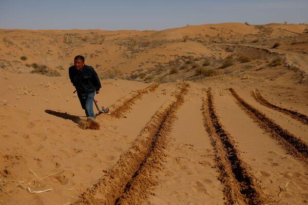 Un hombre prepara el terreno para la siembra en el borde del desierto de Gobi, en la provincia de Gansu.  - Sputnik Mundo