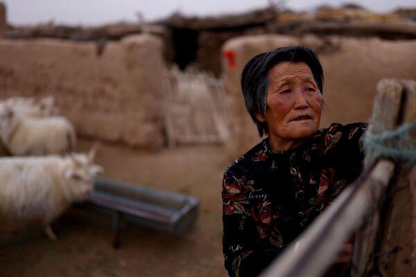 Los 'dragones amarillos', como los chinos llaman poéticamente a las tormentas de polvo, se tragan cada año hasta 1.300 kilómetros cuadrados de terrenos.En la foto: una mujer y su ganado en una aldea al borde del desierto de Gobi, en la provincia de Gansu.  - Sputnik Mundo