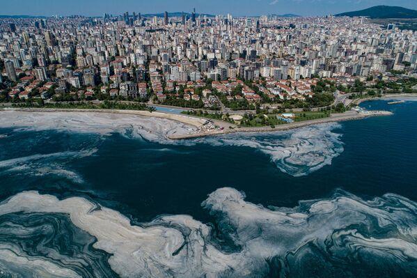 Para hallar la fuente de la contaminación, un grupo de 300 personas inspeccionó las instalaciones de depuración de aguas residuales y reciclaje de residuos sólidos. - Sputnik Mundo