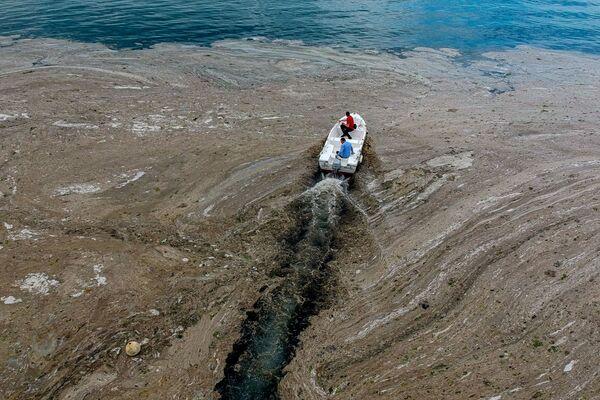 Ahora proponen mejorar las estaciones de depuración en los cinco distritos de Estambul con el mayor nivel de contaminación del mar. - Sputnik Mundo