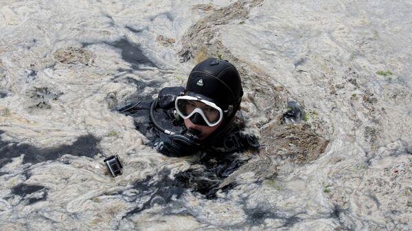 Дайвер во время очистки моря от слизи в Турции  - Sputnik Mundo
