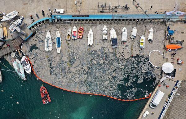 Los equipos de buceadores participan en los trabajos. También se usan barreras flotantes. En la foto: una vista aérea del lugar donde se realizan los trabajos de depuración del mar de Mármara. - Sputnik Mundo