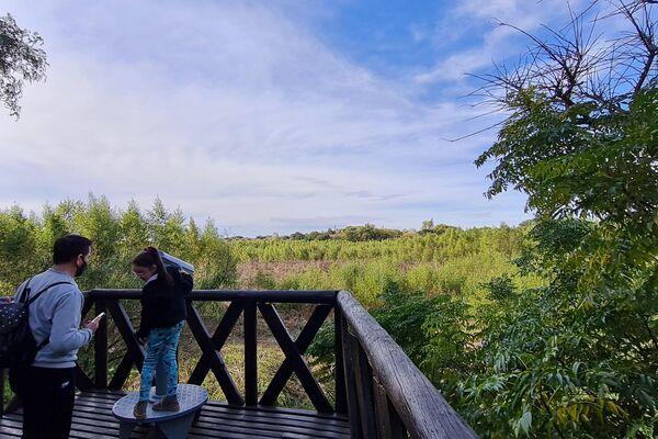 Cuenta con varios pacíficos miradores a los humedales, donde viven más de 2.000 especies de plantas y animales - Sputnik Mundo
