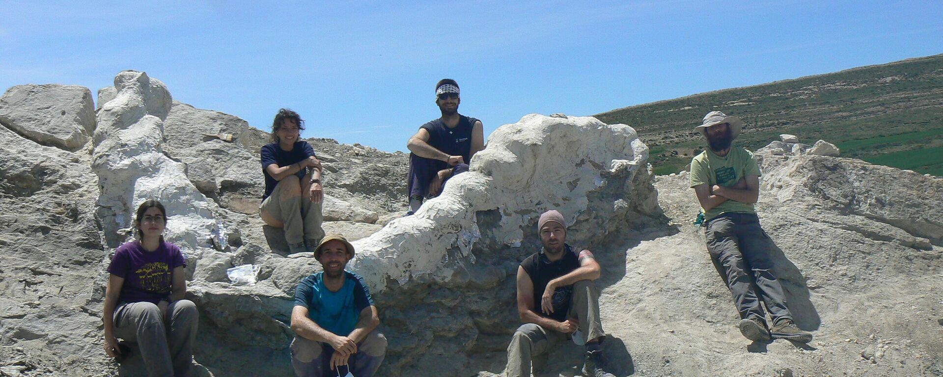Paleontólogos tras la excavación de la serie vertebral articulada, protegida con yeso - Sputnik Mundo, 1920, 11.06.2021