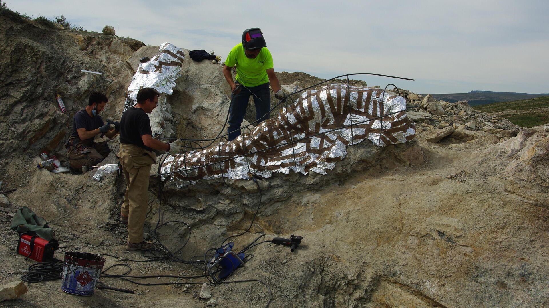 Paleontólogos junto al herrero Alberto Ros montando la estructura de hierro para el transporte de los fósiles - Sputnik Mundo, 1920, 11.06.2021